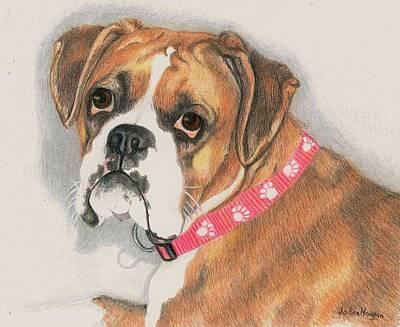 Boxer Drawing - Muzzy by JoAnn   Morgan