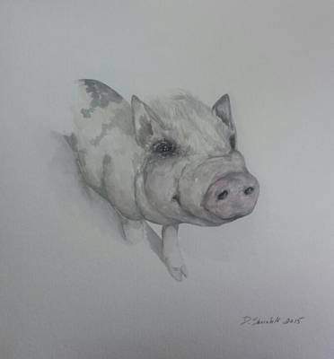 Potbelly Pig Painting - My Asher by Dianne Shoenfelt