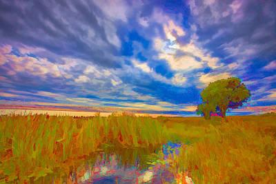 Swamp Digital Art - My Backyard II by Jon Glaser