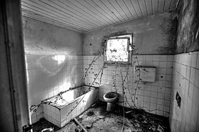 Photograph - My Bathroom by Joseph Amaral
