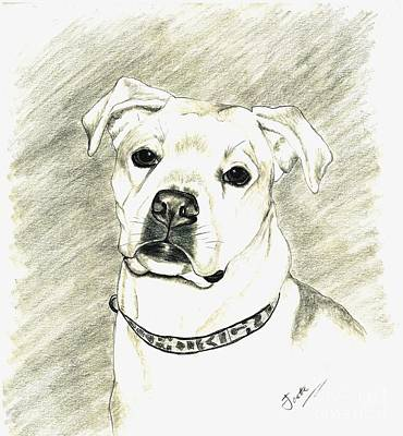 Drawing - My Bella by Joette Snyder