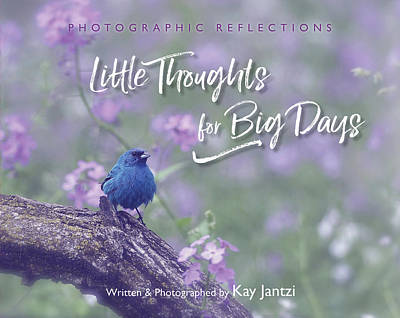 Photograph - My Book by Kay Jantzi
