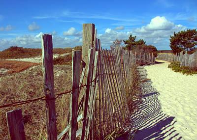 Photograph - My Cape Cod by Lori Pessin Lafargue