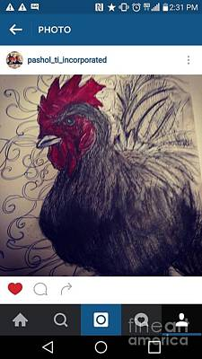Drawing - My Cock In Your Face by Rooster Art