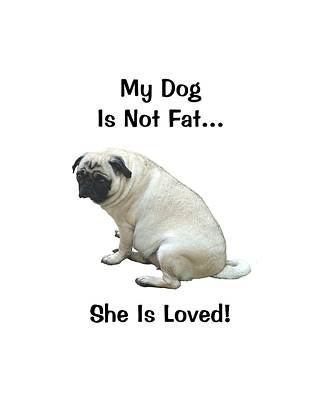 Mixed Media -  My Dog Is Not Fat Pug by Patricia Barmatz