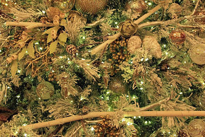 Photograph - A Slice Of Christmas Tree Delight by Cora Wandel