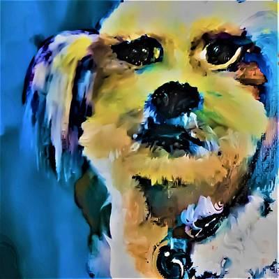 Digital Art - My First Shihtzu by Lisa Kaiser