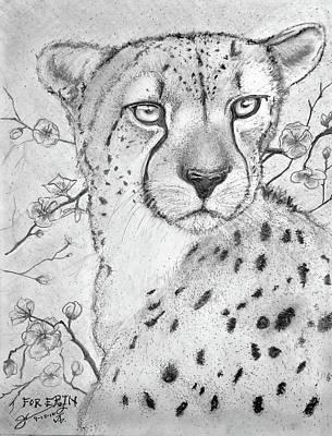 Cheetah Drawing - My Friend Cheetah by Jose A Gonzalez Jr