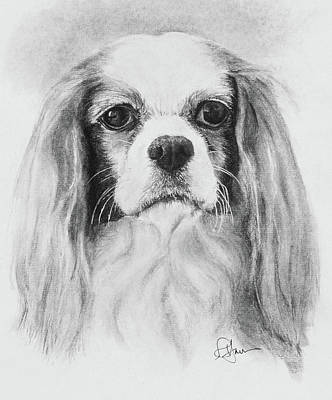 Drawing - My Friend Desi by Rachel Hames