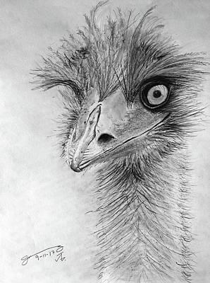 My Friend The Emu II Original