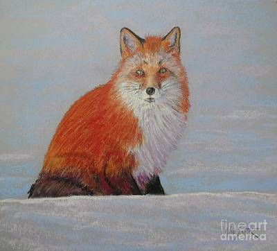 Pastel - My Friend The Fox  by Rae  Smith PAC