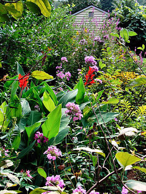 Photograph - My Garden by Natalie Holland