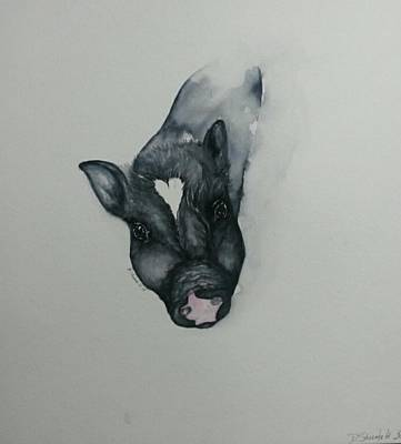 Potbelly Pig Painting - My Gideon by Dianne Shoenfelt