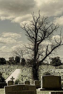 Richmond Virginia Photograph - My Grave Kingdom by Sharon Popek