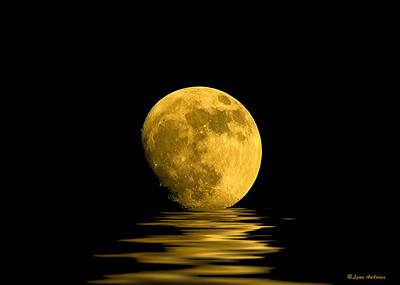 Ocean. Reflection Photograph - My Harvest Moon by Lynn Andrews