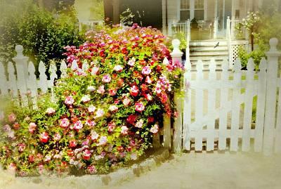 Photograph - My Heart My Garden by Diana Angstadt