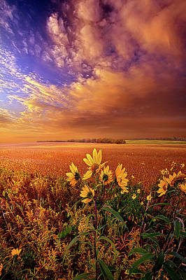 Photograph - My Life Asleep by Phil Koch