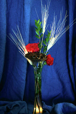 Photograph - My Little Boquet by Gary Brandes
