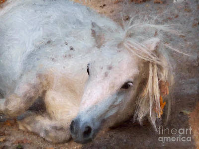 My Little Horse Art Print by Angela Doelling AD DESIGN Photo and PhotoArt
