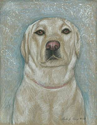 Drawing - My Maggie by Linda Nielsen