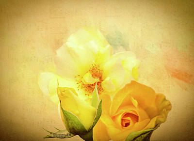 Digital Art - My Melody Of Love by Diane Schuster
