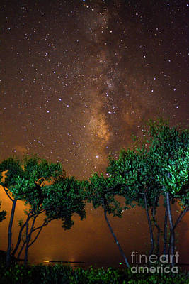 Photograph - My Milky Way by Quinn Sedam