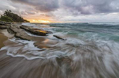 Beauty In Nature Photograph - My Morning Joe by Jon Glaser