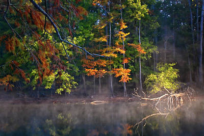 Texas Lake Photograph - My Morning View by Lana Trussell