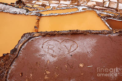 Terracing Photograph - My Muddy Valentine 2 by James Brunker