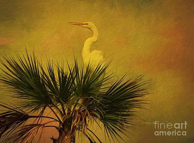 Painting - My Palm Tree by Deborah Benoit