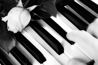 Photograph - My Piano by James BO  Insogna