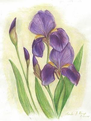 My Purple Irises Art Print