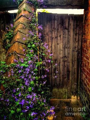 Photograph - My Secret Garden Gate 2 by Joan-Violet Stretch