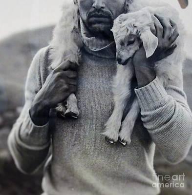 Photograph - A Good Shephard by L Cecka