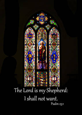 Photograph - My Shepherd by Larry Bishop