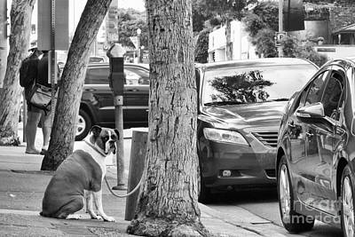 Photograph - My Street, Dude by Vinnie Oakes
