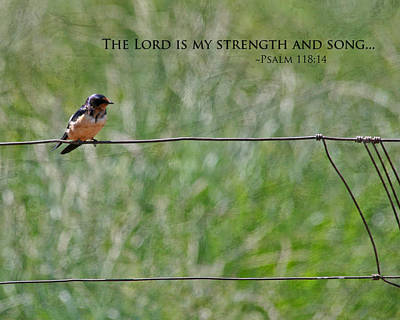 Bible Verse Photograph - My Strength by Bonnie Bruno