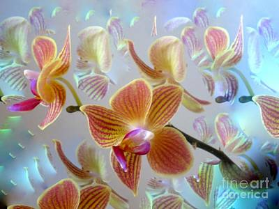 Photograph - My Striped Orchid And A Touch Of Digital  by Phyllis Kaltenbach