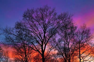 Photograph - My Sunset by Steve Stephenson