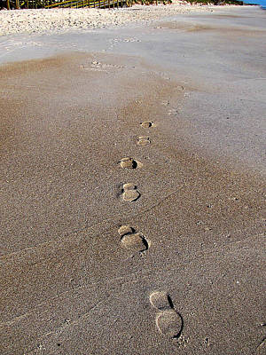Photograph - My Trail To Playalinda Beach   by Chris Mercer