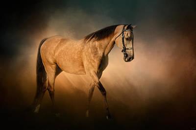 Buckskin Horse Photograph - My Turn by Jai Johnson
