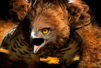 Red Tail Hawk Digital Art - My Vision  by E Scot Crawford