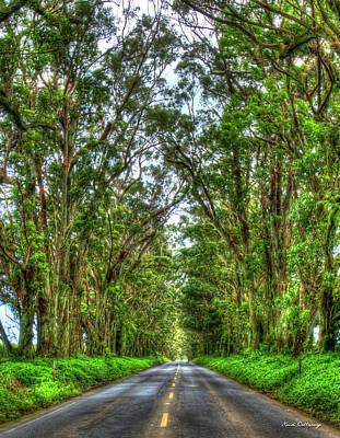 Photograph - My Way Home Eucalyptus Tree Tunnel Kauai Hawaii Collection Art by Reid Callaway