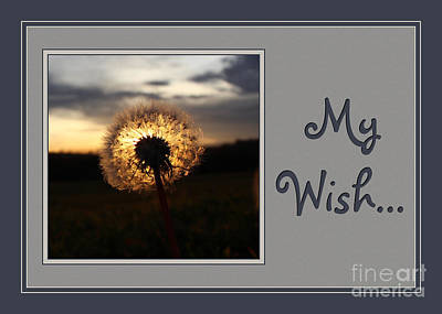 Digital Art - My Wish Dandelion Sunset by JH Designs