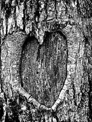 Photograph - My Wood Heart  by Expressionistart studio Priscilla Batzell