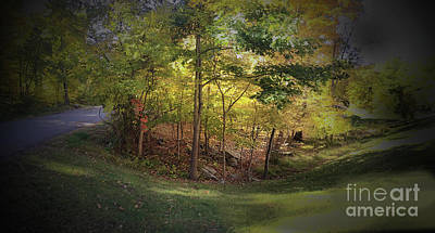 Photograph - My Woodlands Ver 1 by Larry Mulvehill