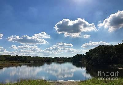 Photograph - Myakka River State Park by Suzanne Lorenz