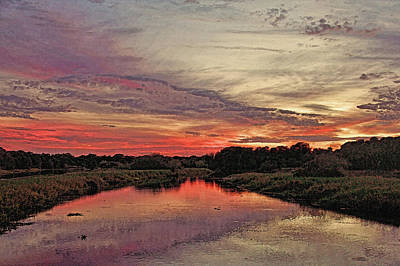 Photograph - Myakka River Sunset By H H Photography Of Florida  by HH Photography of Florida