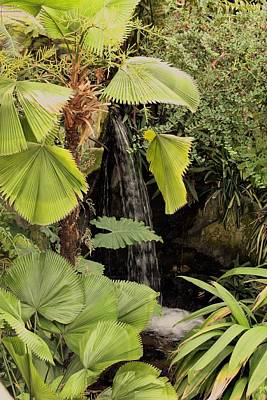 Photograph - Myriad Botanical Gardens Waterfall by Sheila Brown