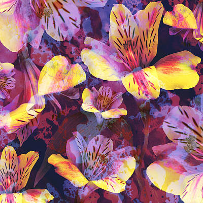 Tim Mixed Media - Mysterious Alstroemeria by Susanne Kasielke